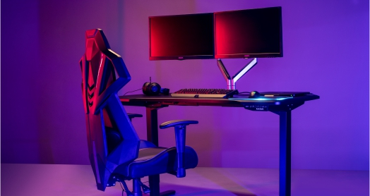 ELectric Gaming Standing Desk